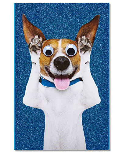 American Greetings Puppy Birthday Card with Glitter
