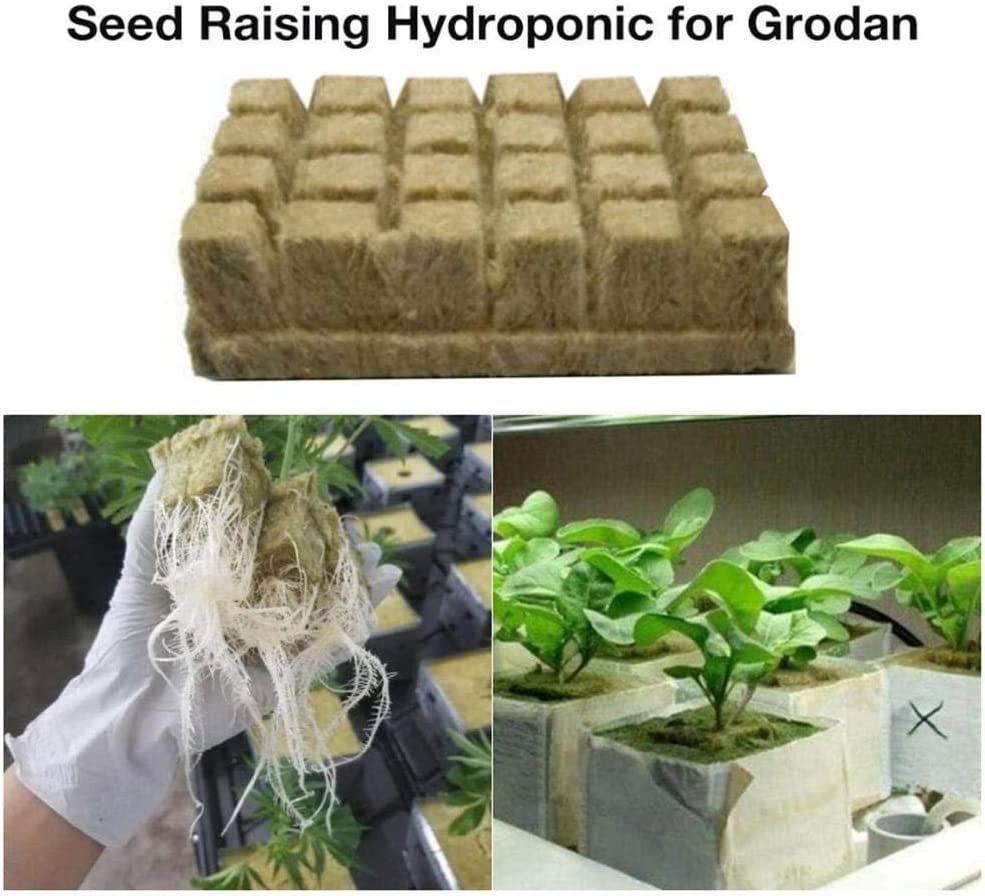Hydroponic Perfect for Cuttings 12-24Plugs Plant Propagation Cloning Rockwool Starter Plugs Grow Cubes Starter Sheet Grow Media Seed Starting