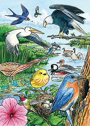 Cobble Hill North American Birds 35 Piece Jigsaw Puzzle
