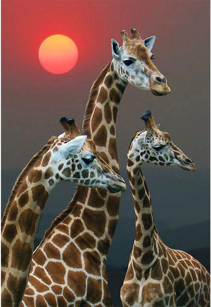 Kit de pintura de diamantes 5D jirafa (15.7 x 11.8 in)