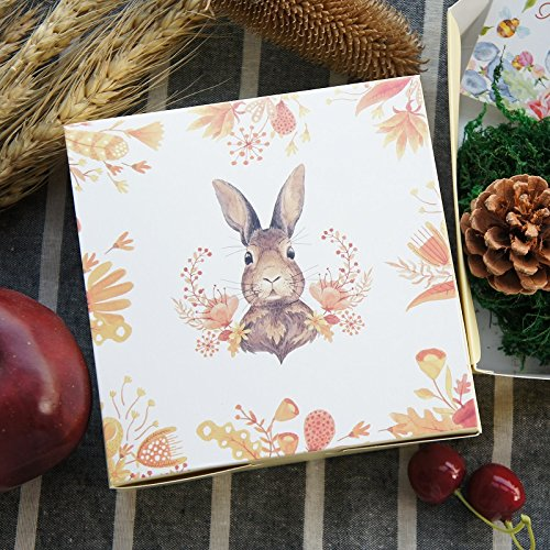 Lavenz Spring Rabbit Design Paper Box, Cookie Chocolate Gifts Packaging. Size : 13.5 cm x 13.5 cm x 5 cm(Set of 10)