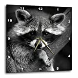 3dRose dpp_173001_3 Baby Raccoon Black and White Digital Image-Wall Clock, 15 by 15-Inch Review