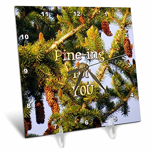3dRose Jos Fauxtographee- Pine Tree - Pining for you written over a Pine Tree in PV UT - 6x6 Desk Clock (dc_255943_1)