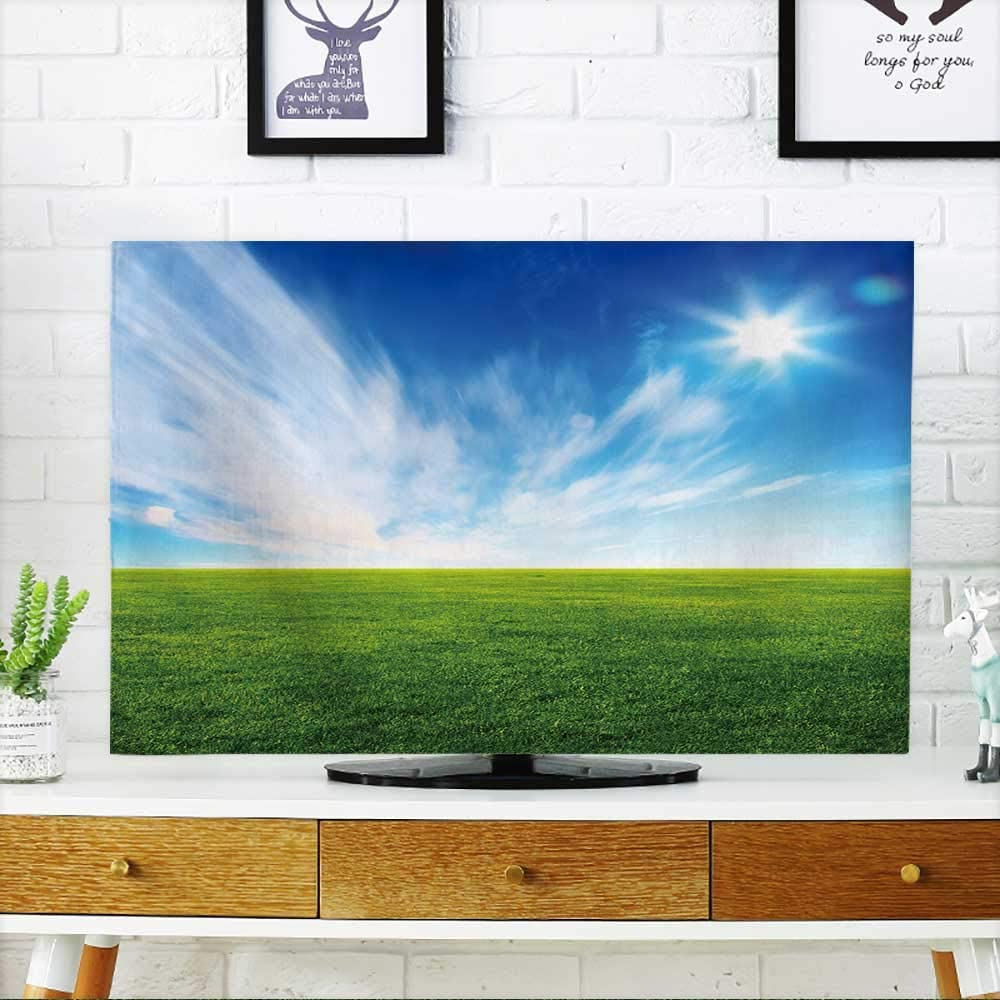 prunus Protect Your TV Beautiful Summer Green Field Blue Sky with Grey Clouds and Wood Planks on Floor Protect Your TV W19 x H30 Inch/TV 32