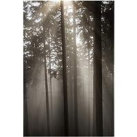 Tangbasii - Poster da Parete con Immagine di Foresta Solare, Senza Cornice, Decorazione per Soggiorno, Camera da Letto