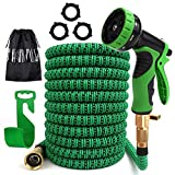 PiscatorZone Garden Hose 25ft Expandable Flexible Water Hose with 9- Pattern Spray Nozzle,Extra Strength Fabric Protection Collapsible Hose for Gardening Lawn Car Pet Washing (Tamaño: 25 ft)
