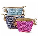 tag Diamond Palm Leaf Basket Set/3