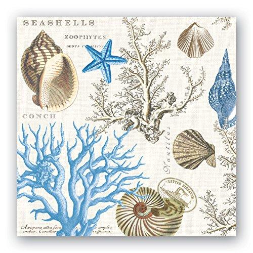 (Michel Design Works 20-Count 3-Ply Paper Luncheon Napkins, Seashore)
