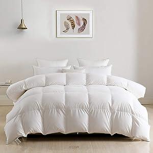 Goose Down Comforter Duvet Full/Queen - Luxury European Down Feather Comforter Insert - Ultra Soft Egyptian Cotton, 750 Fill Power 46oz Medium Weight for All Season, 90x90 White