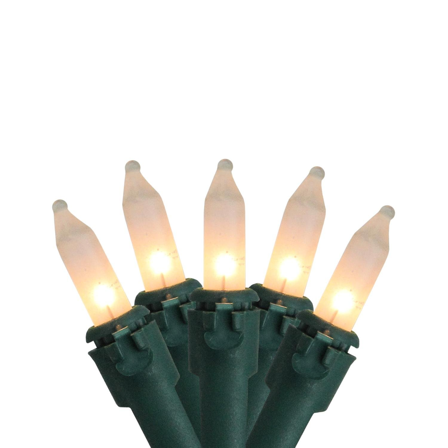 Set of 50 Frosted White Mini Christmas Lights 6'' Spacing - Green Wire