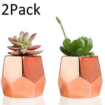 Easma Copper Planter Flower Pots Ceramic Succulent Plants Pot/Catus Plant  Pots Set Of 2