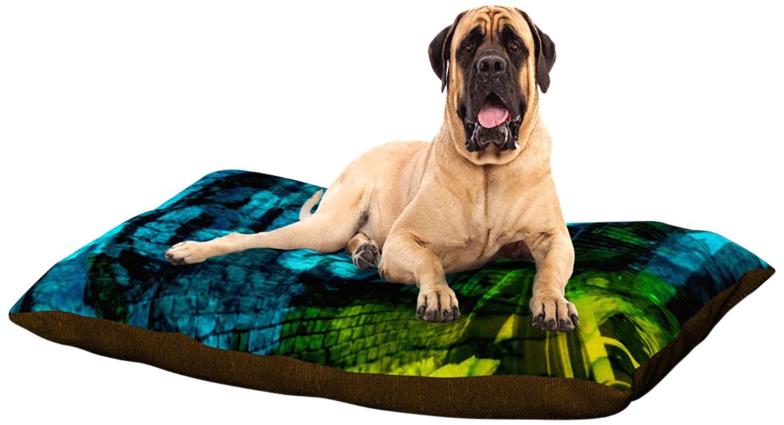 X-Large 40\ Kess InHouse Claire Day Drops  Dog Bed, 50 by 60-Inch, Green