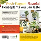 Growing Tasty Tropical Plants in Any
