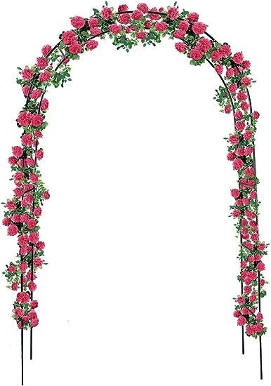 Rose arco 240 x 140 Pergola Rose Garden Rank ayuda Jardín rosas de escalada # 1719: Amazon.es: Jardín