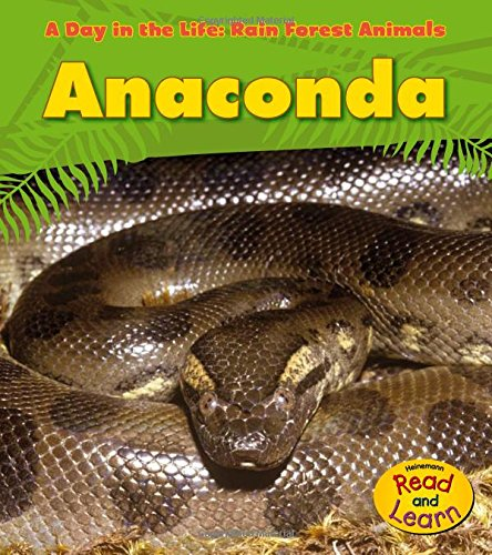 (Anaconda (A Day in the Life: Rain Forest)