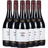 Casillero del Diablo 红魔鬼 黑皮诺红葡萄酒750ml*6瓶(智利进口红酒) … (12支)