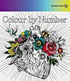 Colour By Number (CD+Blu-ray Disc)