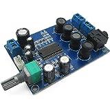HiLetgo YDA138 2 * 20W デュアル チャンネル デジタル アンプ ボード パワーアンプモジュール DC 9-14V [並行輸入品]