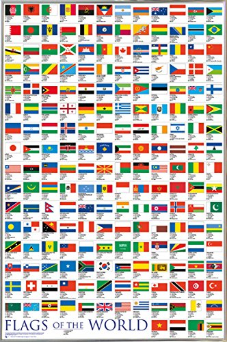 Flags of the World Poster in a Silver Metal Frame  04133-PSA
