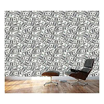 Lovely Design, That's 100% USA Made, 100 Dollar Bills Collage Background Large Money Wall Mural Removable Peel and Stick Wallpaper