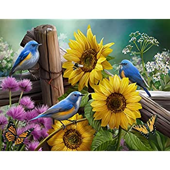 Sonstige North American Song Birds 4In1 Puzzle Pack