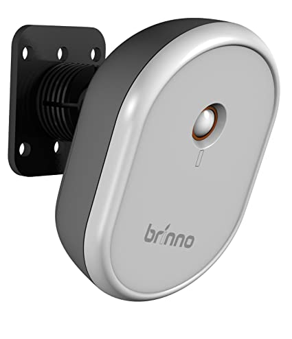 Brinno MAS100 Inalámbrico Techo/pared Negro, Gris detector de movimiento - Sensor de movimiento