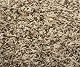 Koeckritz 8'x10′ Frieze 25 oz Gremstone Bronzite Area Rug Carpet Many sizes and Shapes Review