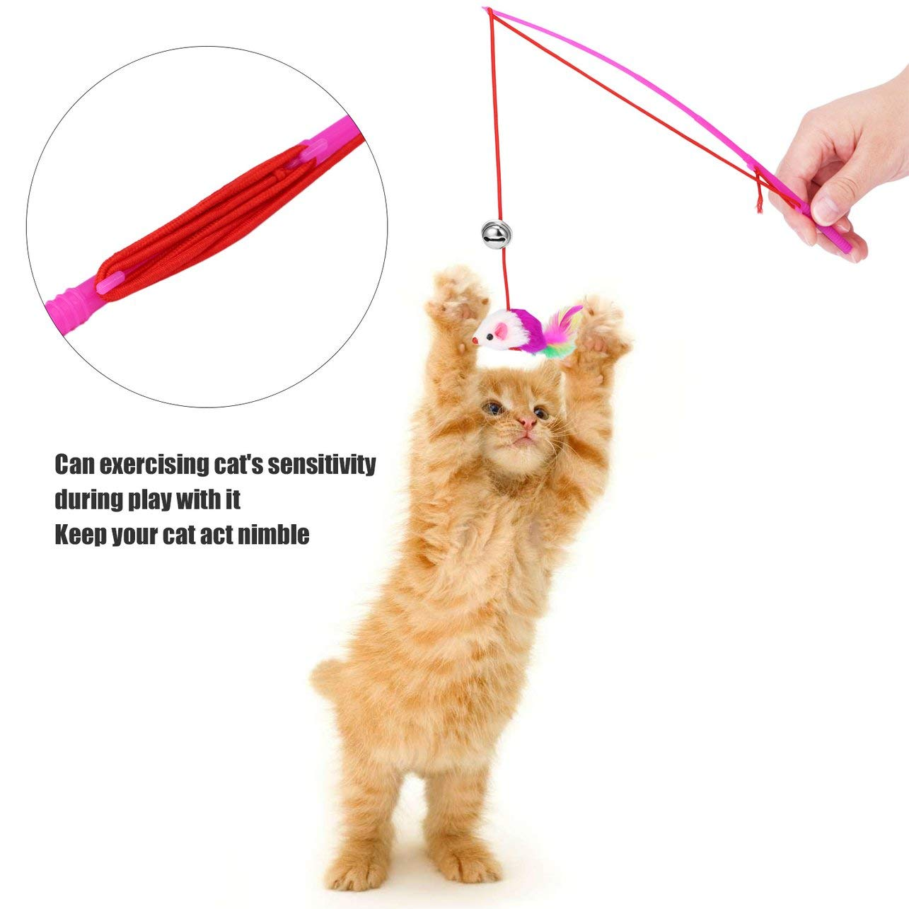 Heaviesk Feather Toy Wand Teaser Wand Cat Toys Barra de Varita retr/áctil interactiva con una Variedad de Juguetes de Plumas para ejercitar Gatito o Gato