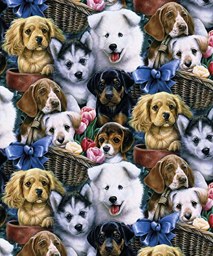 Puppies Make Puppy Dog Faces Cotton Fabric by The -