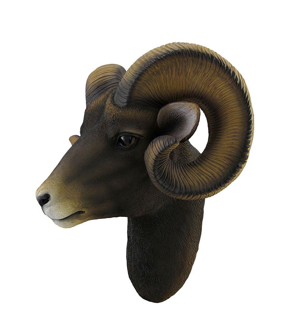 Zeckos Resin Wall Sculptures Ram Head Bust Sculptural Wall Hanging 14 X 15 X 9.5 Inches Brown by Zeckos (Image #3)