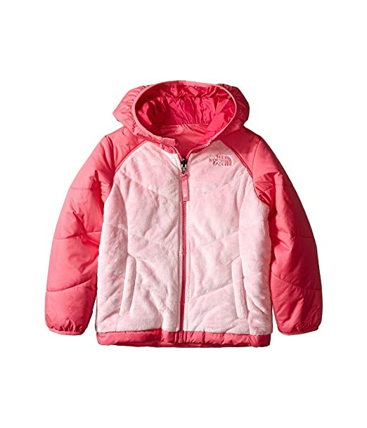 300ee0639 Amazon.com: The North Face Reversible Perseus Jacket Toddler Girls ...
