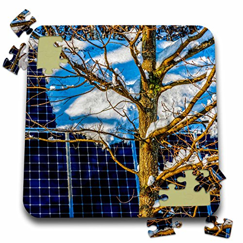 3dRose Alexis Photography - Objects - Young oak tree and a snow covered solar power panel in winter park - 10x10 Inch Puzzle (pzl_280888_2) -