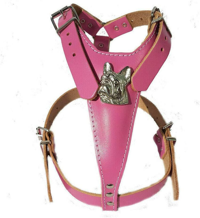 Collar and Lead Medium Size with French Bulldog Badges M/&D Beautiful Baby Pink Set Leather Dog Harness