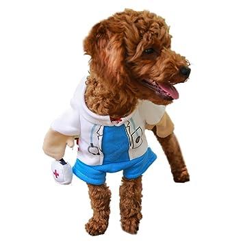 DELIFUR Hund Katze Doktor Kost¨¹m Haustier Arzt Kleidung Halloween Jeans Outfit Bekleidung