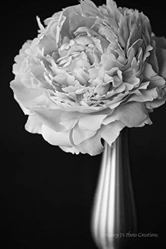 Amazon Peony Photo Unframed Black And White Flower Print Floral