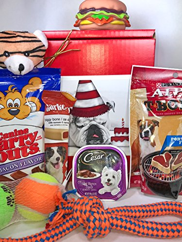 Labrador Dog Gift Box (Dog Gift Box Basket For A Favorite Canine Fur Baby - Bulldog with Birthday Cake - Send These Treats and Toys to a Furry Pet Friend! - Prime)