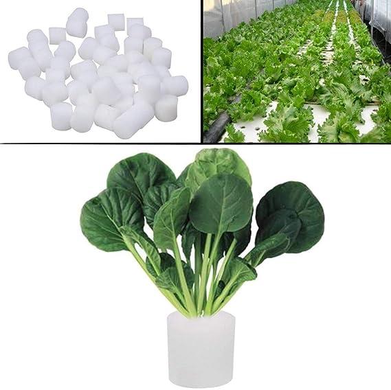 50 pcs Hydroponic Sponge Non-toxic Planting Soil Less Gardening Plant Vegetable