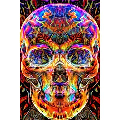 DIY 5D Diamond Painting by Number Kit Partial Drill Rhinestone Embroidery Arts Craft for Home Wall Skull 11.81x14.96 inches