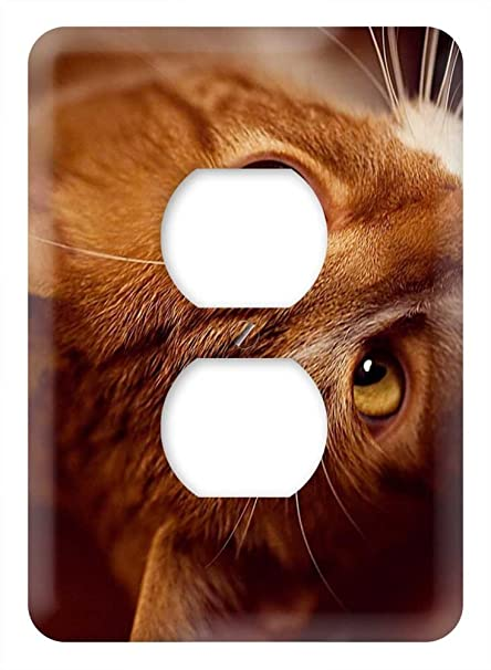 Amazon.com: WaPlate - Cat - Switch Plate Outlet Cover: Home ...