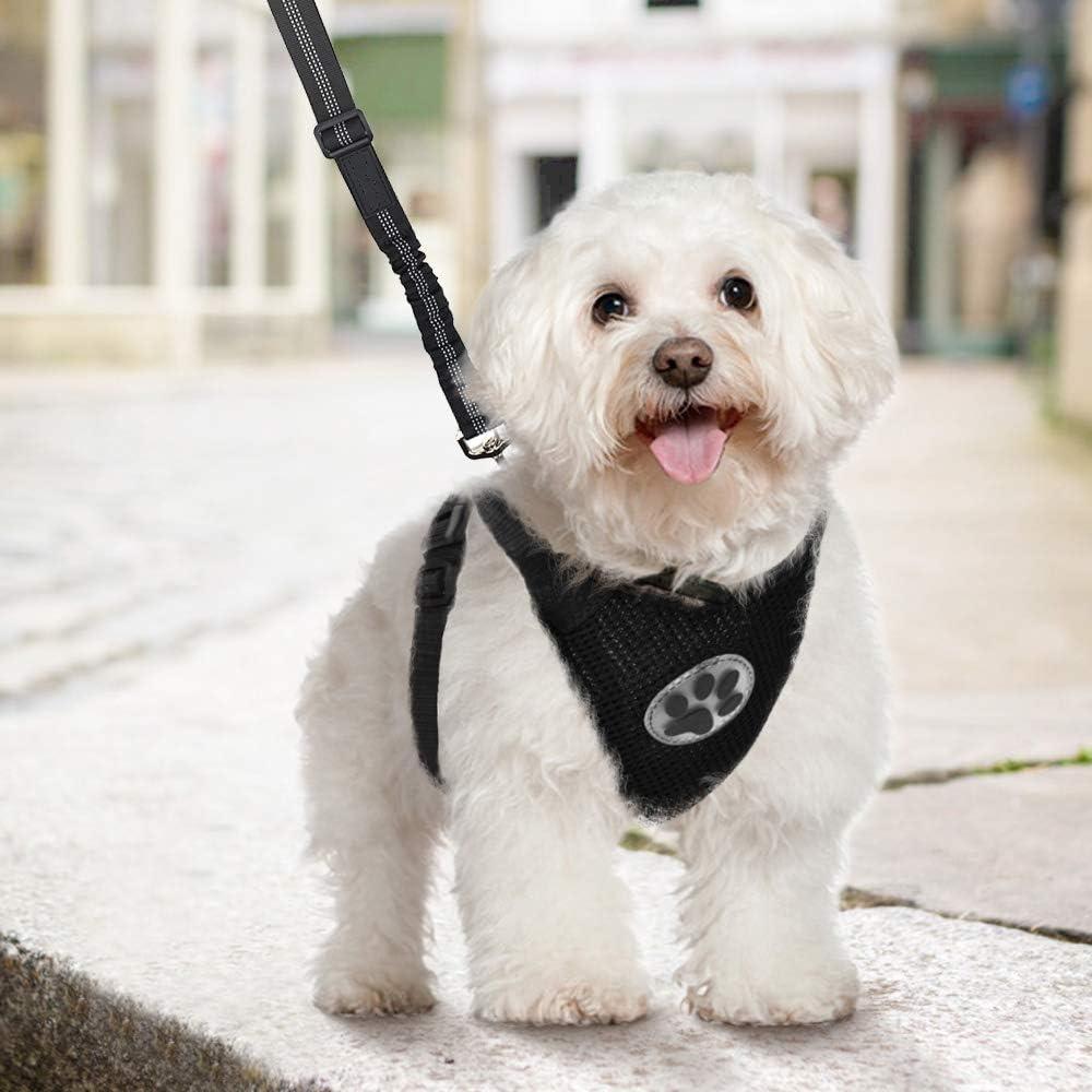 Hundegeschirr mit Sicherheitsgurt luftdurchl/ässiges Latex-Gittergewebe Geschirr Reisenweste Autosicherheitsgurt f/ür Sicherheitsgeschirr Kleine Mittlere Hunde Lukovee Hundegeschirr Einstellbar
