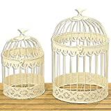 """The Farmer's Market Bird Cages, Set of 2, Table Top Centerpieces, For Florals, Candles and More, Metal, Handmade, Rustic Vintage Style, 1 Foot and 1 Foot 3/5"""" Tall, By Whole House Worlds"""