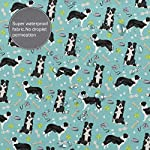 Border Collie Coffee Home Universal Bathroom Personality Durable Waterproof Mildew Polyester Fiber Shower Curtain Liner 60 X 72 Inch with 12 Hooks and Weighted Lead Wire 10