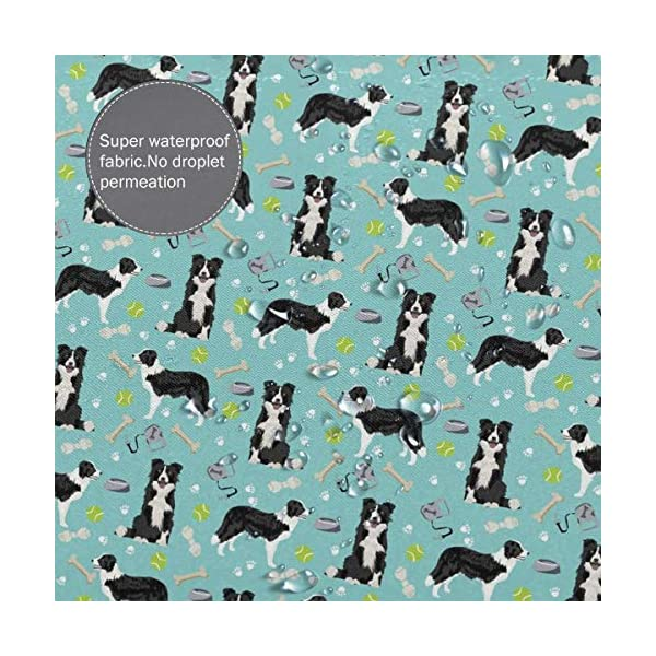 Border Collie Coffee Home Universal Bathroom Personality Durable Waterproof Mildew Polyester Fiber Shower Curtain Liner 60 X 72 Inch with 12 Hooks and Weighted Lead Wire 5