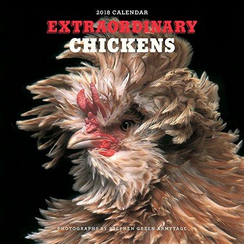 extraordinary chickens calendar 2018