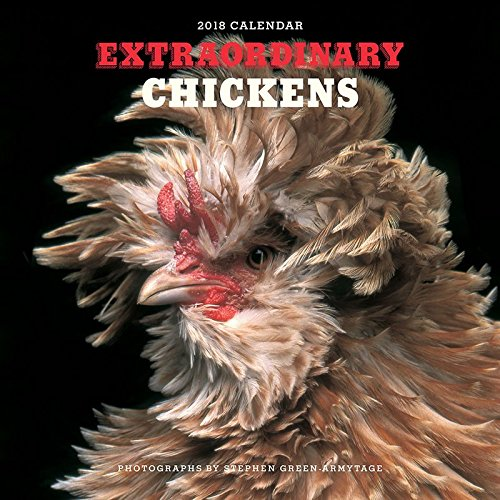 Extraordinary Chickens 2018 Wall Calendar (Rooster Bird Chicken)