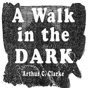 A Walk in the Dark Audiobook