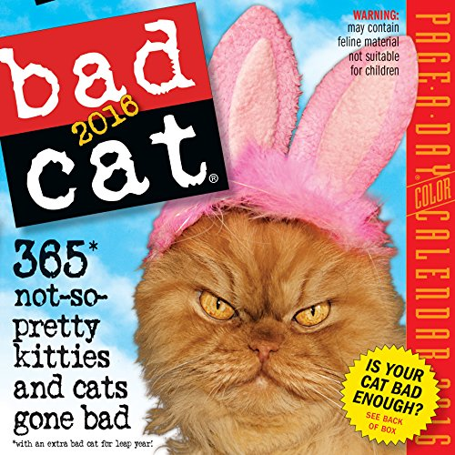 Bad Cat Color Page-A-Day Calendar 2016](Cats Page A Day Calendar 2015)