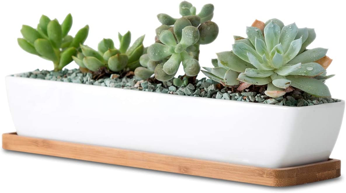 11.1 inch long rectangle White Ceramic Succulent Planter Pots Mini Flower Plant Containers with Bamboo Saucers. Product size 11.1×2.36×1.77inch. long rectangle