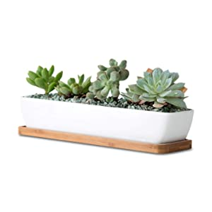 11.1 inch long rectangle White Ceramic Succulent Planter Pots / Mini Flower Plant Containers with Bamboo Saucers. Product size:11.1x2.36x1.77inch. (long rectangle)