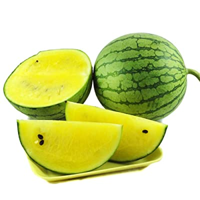 ekqw015l 10Pcs Rare Variety Sweet Watermelon Seeds Fruit Vegetable Garden Home Plant Garden Flower Plant Seeds Decor : Garden & Outdoor